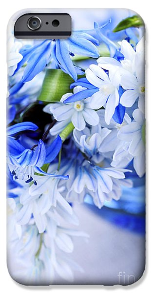 Young iPhone Cases - First spring flowers iPhone Case by Elena Elisseeva