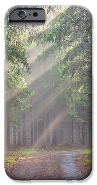 God beams - coniferous forest in fog iPhone Case by Michal Boubin