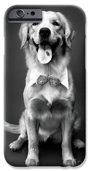 Cut-outs iPhone Cases - Golden Retriever iPhone Case by Oleksiy Maksymenko