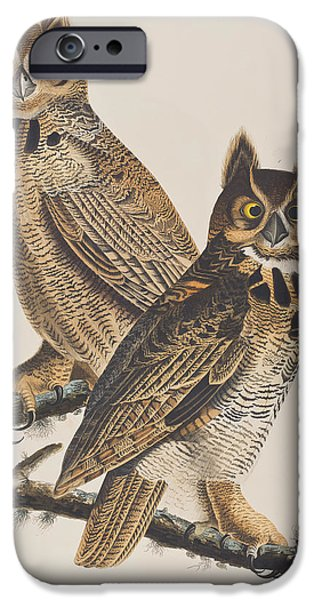 Colored Owls iPhone Cases - Great Horned Owl iPhone Case by John James Audubon