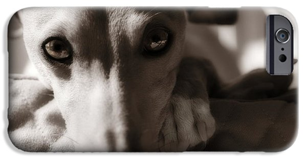 Rescued Greyhound iPhone Cases - Heart You iPhone Case by Angela Rath