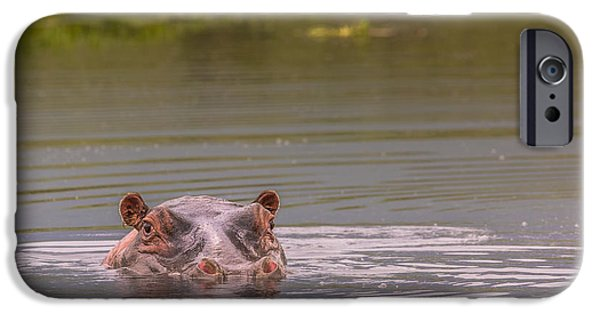 Power iPhone Cases - Hippos - Serengeti Wildlife Conservation Area, Safari, Tanzania, iPhone Case by Mariusz Prusaczyk