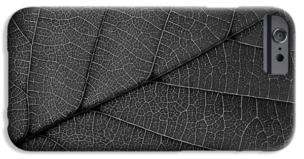 Autumn iPhone Cases - Leaf Veins iPhone Case by Alexas Fotos