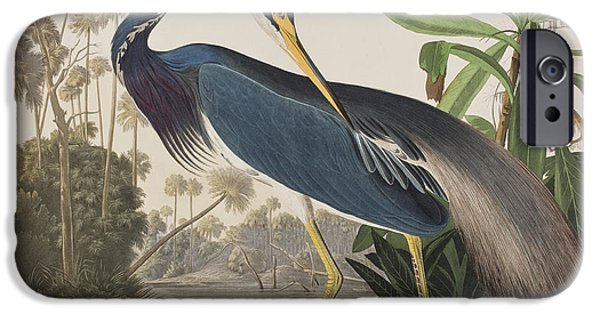 Heron Paintings iPhone Cases - Louisiana Heron  iPhone Case by John James Audubon