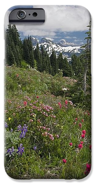 Mountain Meadow iPhone Case by Bob Gibbons