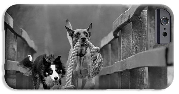 Dogs iPhone Cases - My Turn iPhone Case by Katrin Kerou