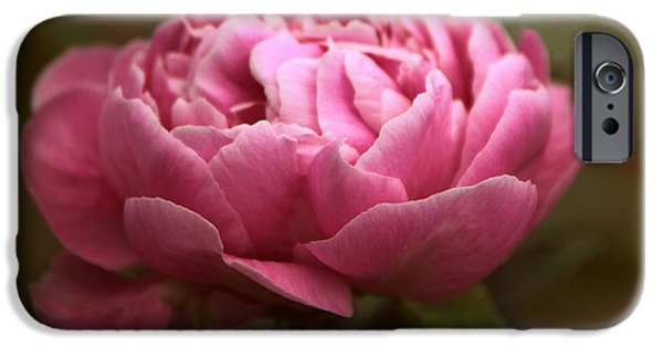 Peonies iPhone Cases - Peony Blossom iPhone Case by Jessica Jenney