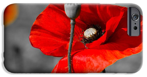 Blooming Pyrography iPhone Cases - Poppy iPhone Case by Peteris Vaivars