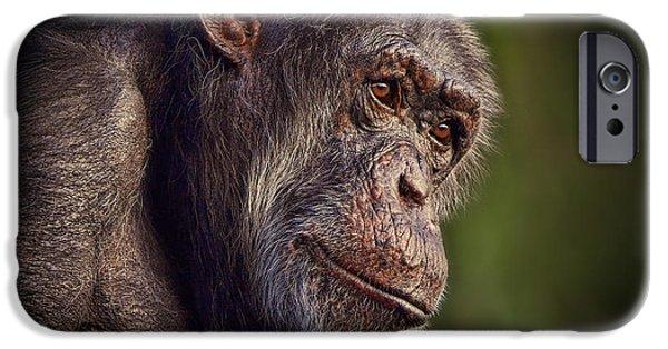 Old Digital Art iPhone Cases - Portrait of an Elderly Chimp II iPhone Case by Jim Fitzpatrick