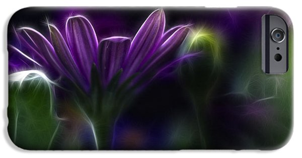 Nature Abstract iPhone Cases - Purple Daisy iPhone Case by Stylianos Kleanthous