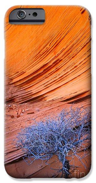 Park Scene iPhone Cases - Rainbow Rocks Dead Bush #1 iPhone Case by Inge Johnsson