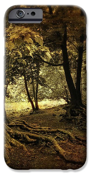 Rooted in Nature iPhone Case by Jessica Jenney
