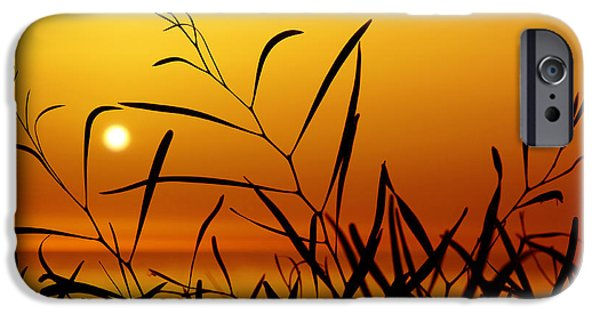 Backdrop iPhone Cases - Sunset iPhone Case by Carlos Caetano