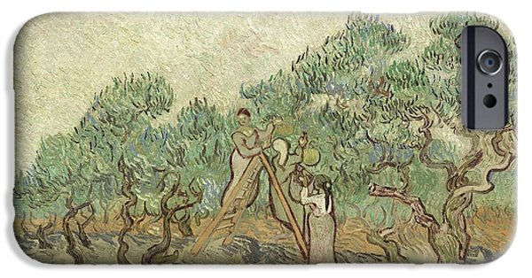 Fruit Tree Paintings iPhone Cases - The Olive Orchard iPhone Case by Vincent Van Gogh