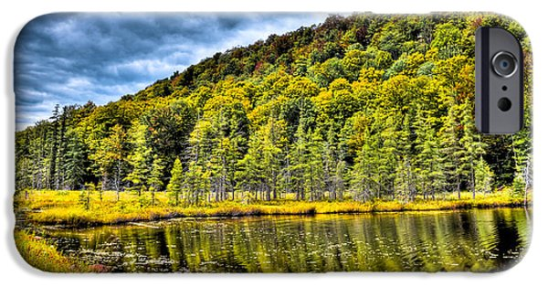 David iPhone Cases - The South Shore of Bald Mountain Pond iPhone Case by David Patterson
