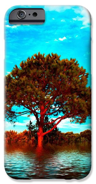 Botanic Illustration iPhone Cases - Trees and grassland in the flood digital painting with a canvas texture iPhone Case by Ken Biggs