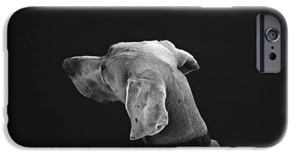 Dog Photography iPhone Cases - True Love iPhone Case by Will Langenberg