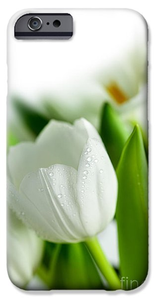 Vibrant iPhone Cases - White Tulips iPhone Case by Nailia Schwarz