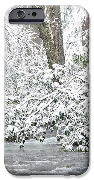 Williams River Scenic Backway iPhone Case by Thomas R Fletcher