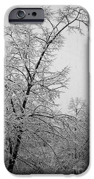 Wintertime iPhone Cases - Winter iPhone Case by Gabriela Insuratelu