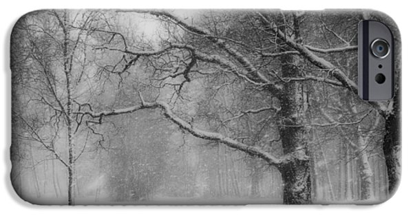 Estonia Photographs iPhone Cases - Winter in Estonia iPhone Case by Vilve Roosioks