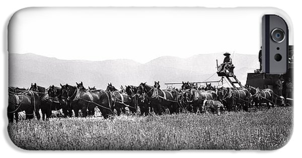 Combine Harvester iPhone Cases - 20-HORSE COMBINE HARVESTS WHEAT c. 1899 iPhone Case by Daniel Hagerman