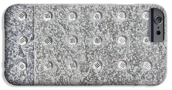Lichens iPhone Cases - Metal background iPhone Case by Tom Gowanlock