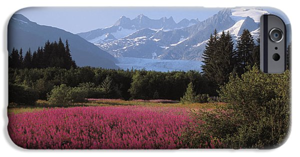 Tongass iPhone Cases - Alaska, Juneau iPhone Case by John Hyde - Printscapes