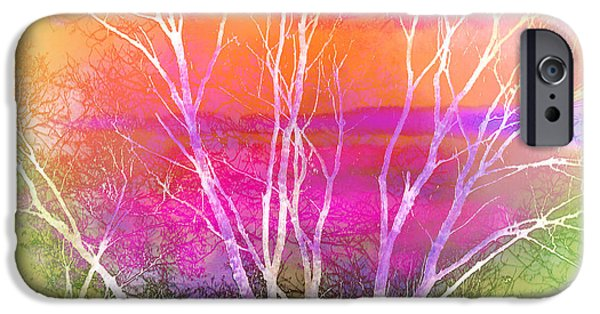Nature Abstract iPhone Cases - Branches iPhone Case by Judi Bagwell