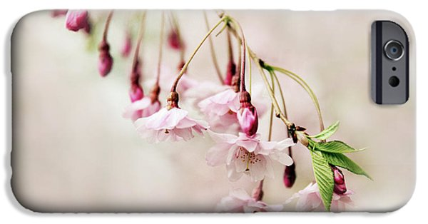 Cherry Blossoms Digital iPhone Cases - Budding Blossom iPhone Case by Jessica Jenney