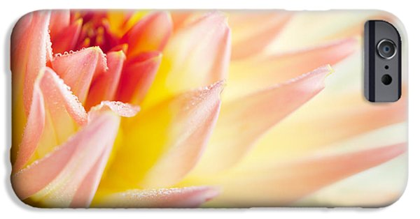 Delicate iPhone Cases - Dahlia iPhone Case by Nailia Schwarz