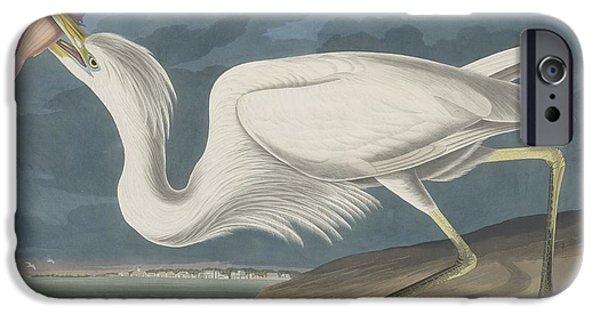 Shorebird iPhone Cases - Great White Heron iPhone Case by John James Audubon