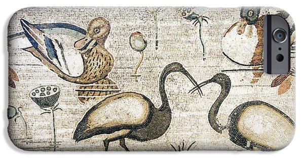 Ibis iPhone Cases - Nile Flora And Fauna, Roman Mosaic iPhone Case by Sheila Terry