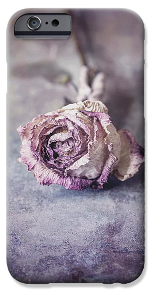 Pastel iPhone Cases - Rose iPhone Case by Maria Heyens