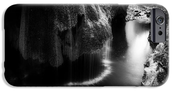 Forest iPhone Cases - Simply Solitude iPhone Case by David Marcu