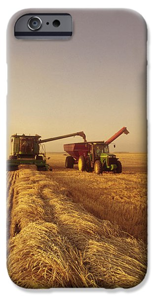 Combine Harvester iPhone Cases - Spring Wheat Harvest, Tiger Hills iPhone Case by Dave Reede