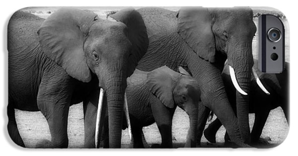 Elephant iPhone Cases - The Elephant Walk iPhone Case by Jurgen Bohm