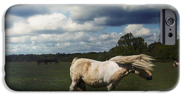 Pony iPhone Cases - Windy Day iPhone Case by Joana Kruse