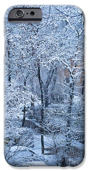 Winter iPhone Case by Gabriela Insuratelu