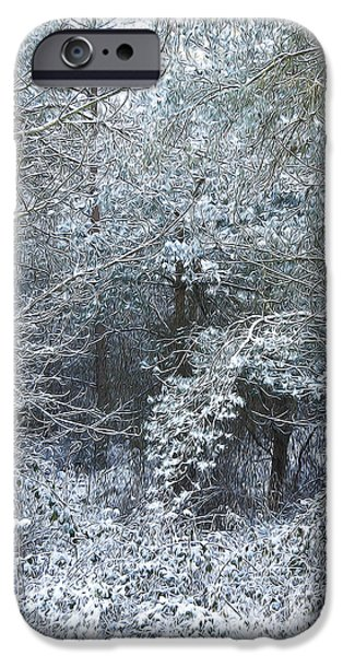 Wolf Picture Art iPhone Cases - Winter iPhone Case by Svetlana Sewell