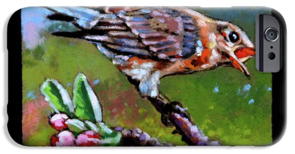 Baby Bird iPhone Cases - Birdman of Alcatraz detail iPhone Case by John Lautermilch