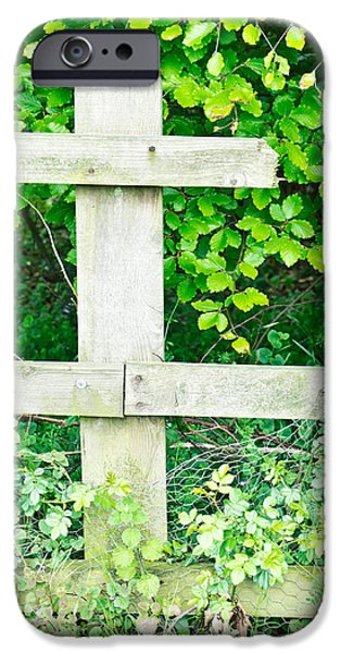 Vandalism iPhone Cases - Broken fence iPhone Case by Tom Gowanlock