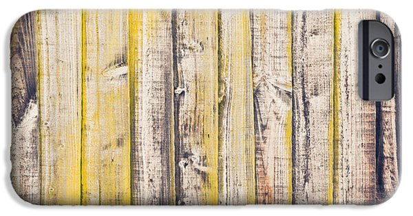 Lichens iPhone Cases - Fence panels iPhone Case by Tom Gowanlock