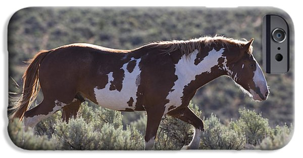 Overo iPhone Cases - Mustang Stallion iPhone Case by Jean-Louis Klein & Marie-Luce Hubert