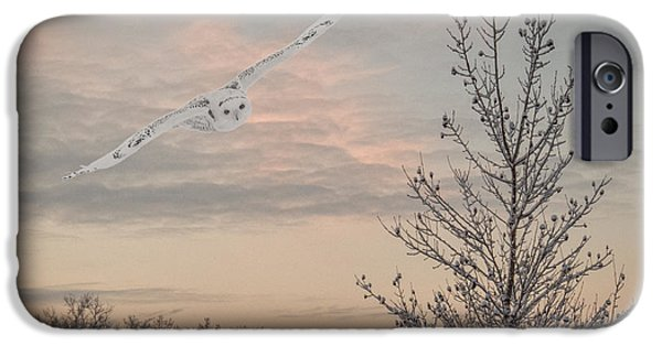 Snowy iPhone Cases - Snowy Owl Glide iPhone Case by Patti Deters