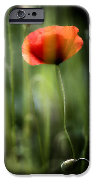 Decorativ iPhone Cases - Poppy iPhone Case by Silke Magino
