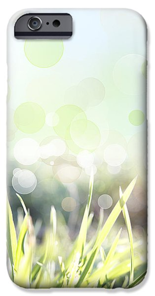 Flora iPhone Cases - Spring background iPhone Case by Les Cunliffe