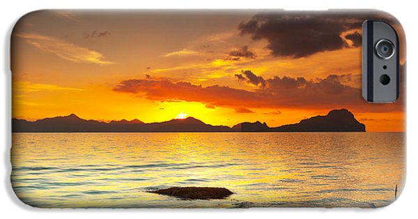 Tree Roots Photographs iPhone Cases - Sunset iPhone Case by MotHaiBaPhoto Prints