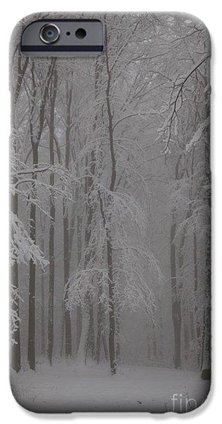 Winter iPhone Case by Gabriela Insuratelu