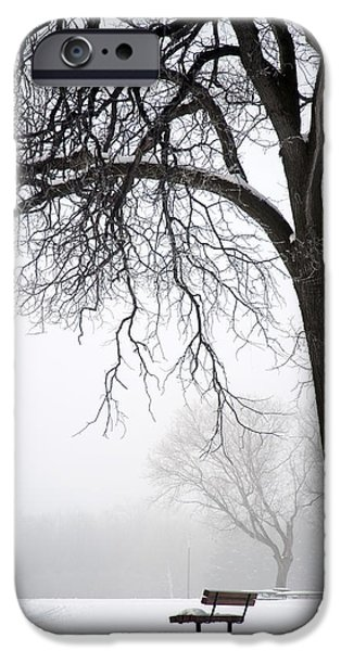 Recently Sold -  - Winter iPhone Cases - Assiniboine Park, Winnipeg, Manitoba iPhone Case by Keith Levit